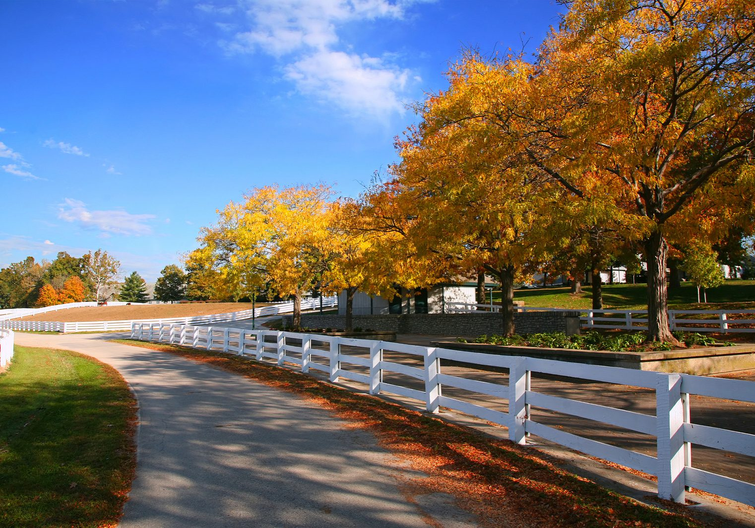 Horse Farm with Beautiful White Fences